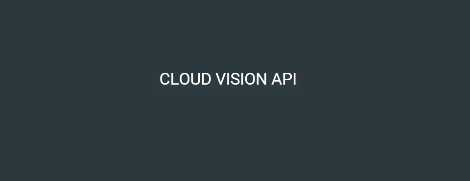 2015-google-cloud-vision-api