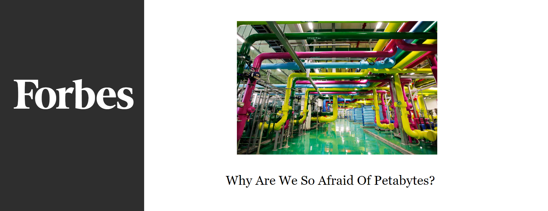 fear why are we so afraid essay Why spiders why couldn't it be 'follow the butterflies' for some, the fear of spiders is innate and not learned according to a duo of psychologists, spi.