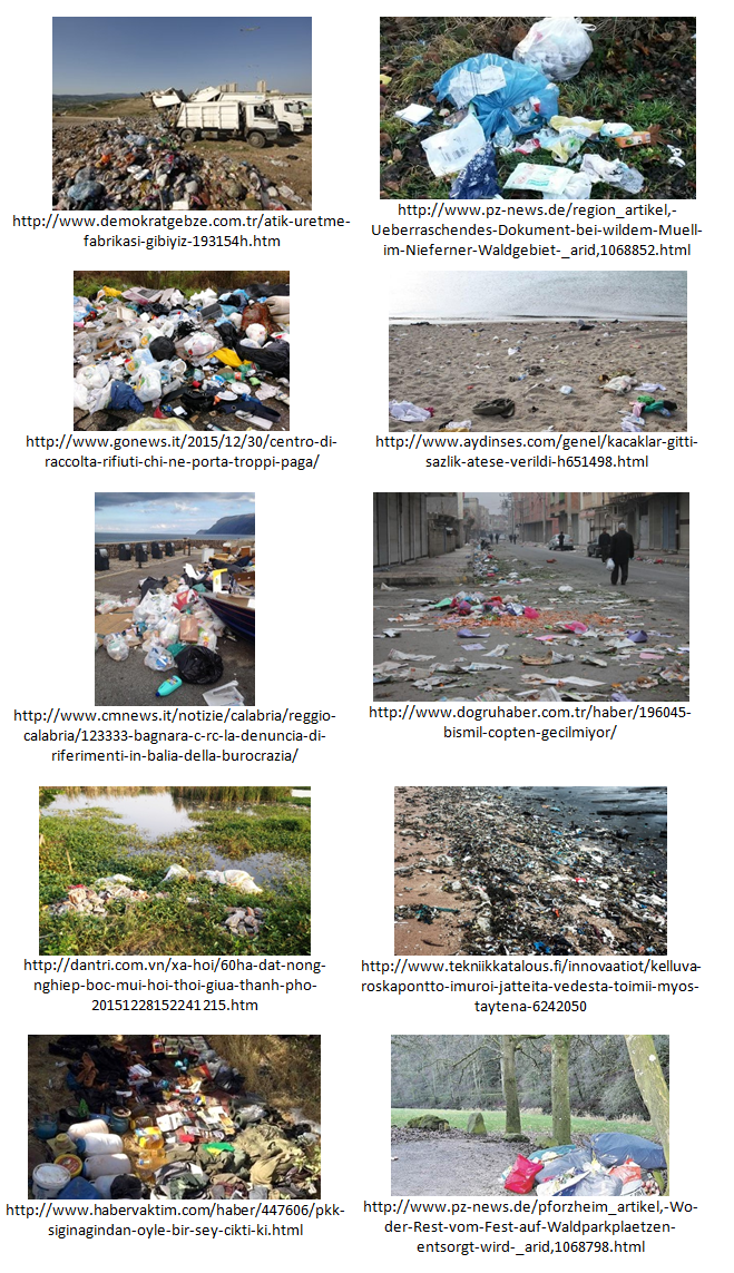 Litter-Vision-API-Examples