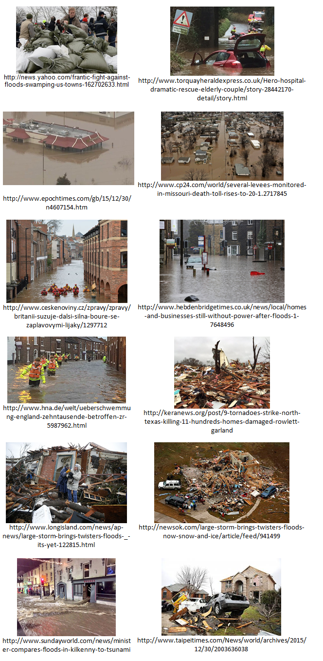 Natural-Disaster-Triaging-Vision-API-Examples
