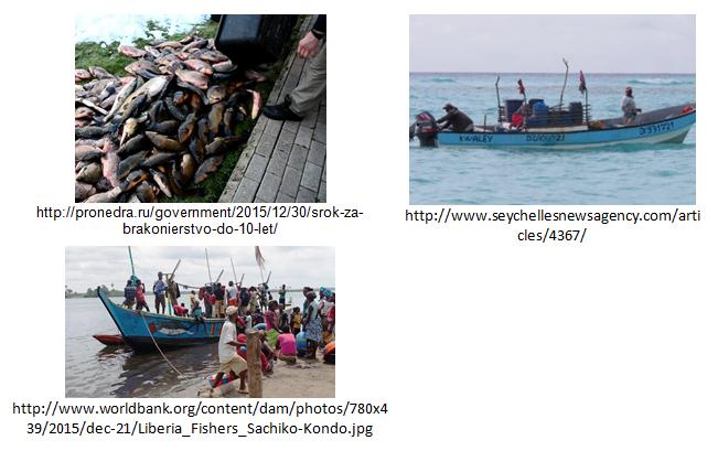 Poaching-Fishing-Vision-API-Examples